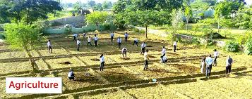 Colleges Of Agriculture Agriculture Colleges In Rajasthan Agriculture Colleges In India