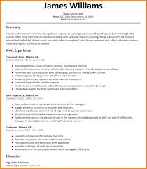 Cashier Summary For Resume Resume Template