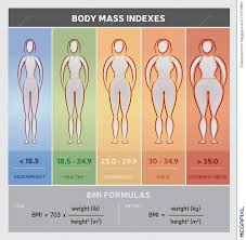 Body Mass Index Diagram Graphical Chart With Body