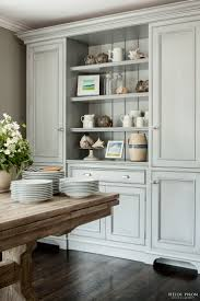 15 Inch Deep Wall Cabinets 25 Best Ideas About Wall Pantry On Pinterest Built In Pantry