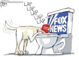 Image result for fox news cartoons political