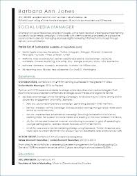 As400 Resume Samples Luxury Standard Professional Resume Format