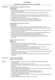 Pricing Strategy Analyst Resume Samples Velvet Jobs