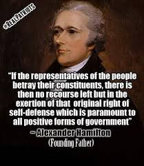 Alexander Hamilton Quotes Delectable PatrioticQuotes Alexander Hamilton Quote Founding Father Source