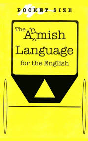 the amish language for the english kindle edition by steve  the amish language for the english by troyer steve swartzentruber dan
