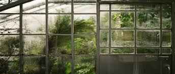 <b>Арт</b>-<b>квест</b> в Ботаническом саду