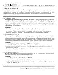 Sample Resume Format For Accounts Executive In India Archives