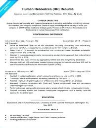 Human Resource Resume Objective Safety Professional Resume Sample Human Resource Resumes Resources 59