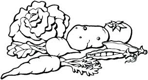 Vegetable Coloring Pages Fruits And Vegetables Coloring Pages Also