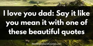 Quotes For Dad Mesmerizing I Love You Dad' The Most Beautiful Heartwarming Quotes