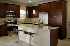 Kitchen Cabinet Espresso Color Rta Espresso Shaker Cabinets For Kitchen Domain Cabinets