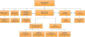 Organizational Chart Of A Drugstore Organizational Chart Trust Drug Store