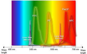 Flow Cytometry Fcm Facs Fluorochrome Selection