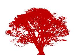 Resume Red Tree Silhouette Clip Art At Clker Com Vector Clip Art