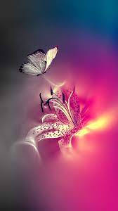 Butterfly Home Screen Nature Wallpaper