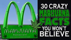 the good facts about marijuana