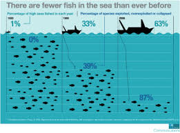 Can The Wto Curb Dangerous Overfishing China Dialogue