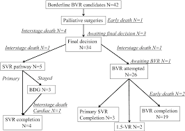 Pathophysiology Of Ventricular Septal Defect In Flow Chart Figure 1 From Staged Biventricular Repair Oriented Strategy