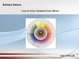 Goldwell Underlying Pigment Chart Belleza Class Format Full Powerpoint
