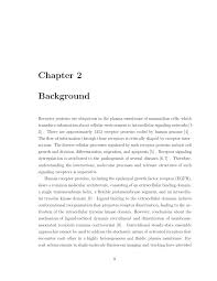 Word Thesis Template Stanford Template For Stanford Thesis Template
