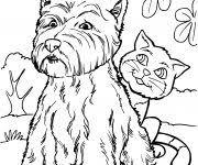 Kleurplaten Honden En Katten 78 Mooi Kleurplaat Hond En Kat 78