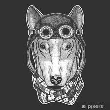 Fototapeta Vinylová Pes Pro Tričko Design Ručně Tažené Ilustrace Pro Tetování Znak Odznak Logo Náplast Chladné Zvíře Nošení Letec