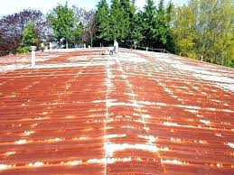 metal roof paint how to rust galvanized roofing painting rusty rusted tin colors a met