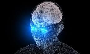 El cerebro se 'nutre' de experiencias para enfrentar situaciones complejas  - TecReview