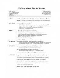 College Application Resume Sample Shockingndergraduate Format ...