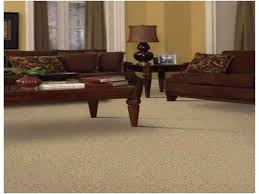 living room area rug ideas luxury white and black area rug best area rugs for hardwood