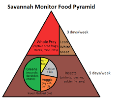 Feeder Insect Nutritional Value Chart Savannah Monitor Food Pyramid Complete Critter