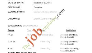 Resume Basic Resume Examples Simple Job Resume Examples Resume
