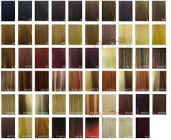Bohyme Color Chart Bohyme Color Chart Ombre Color Color Chart