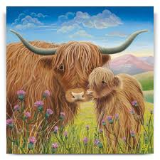 heather and thistle highland cow canvas