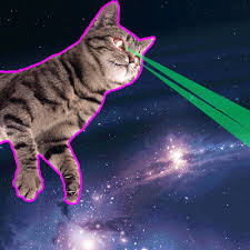 cats shooting lasers out of their eyes. Beautiful Cats Cats Shooting Lasers Out Of Their Eyes Download In T