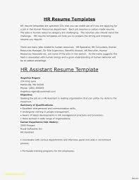Two Column Resume Template Word