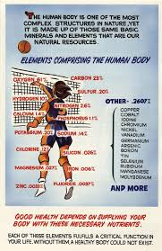 Elements Comprising the Human Body poster | Minerals Education ...