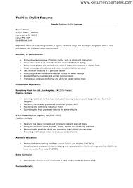 Fashion Stylist Intern Resume Sample