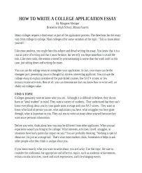 Essay Example For College Argumentative Essay Format College Level