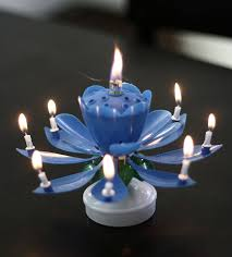 the amazing singing opening flower happy birthday candle pink ca home kitchen
