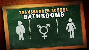 high school essay contest explores transgender policies at schools