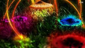 View 11 Neon Mushroom Wallpaper Hd