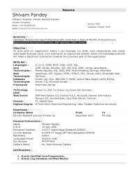Java Sample Resume 4 Years Experience