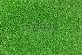 green carpet texture. Green Carpet Texture Macro Stock Photo - 18850622 E