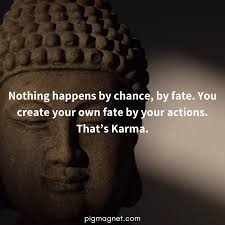 27 Quotes On Laws Of Karma Pig Magnet