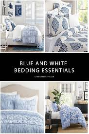 lifestyle expert and blogger can anderson has the scoop on the best blue and white