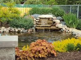 Backyard Ponds Backyard Ponds Archives Glenns Garden Gardening Blog