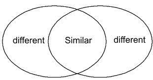 Venn Diagram Comparing Dna And Rna Dna And Rna Anatomy