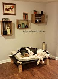 Diy Dog Bed Diy Large Dog Beds Home