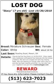 how to make lost dog flyers printable lost dog flyers barca fontanacountryinn com